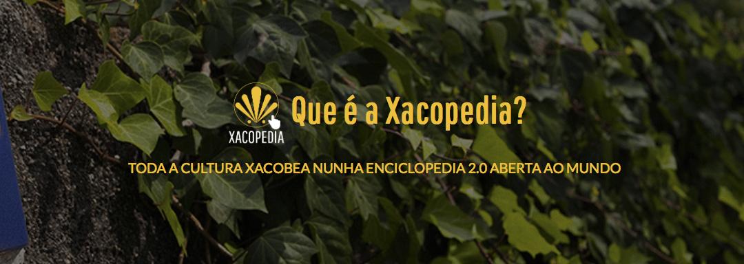 La Xacopedia, la primera enciclopedia del Camino