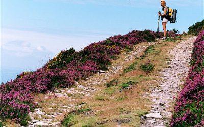 Consejos básicos para hacer el Camino de Santiago en verano