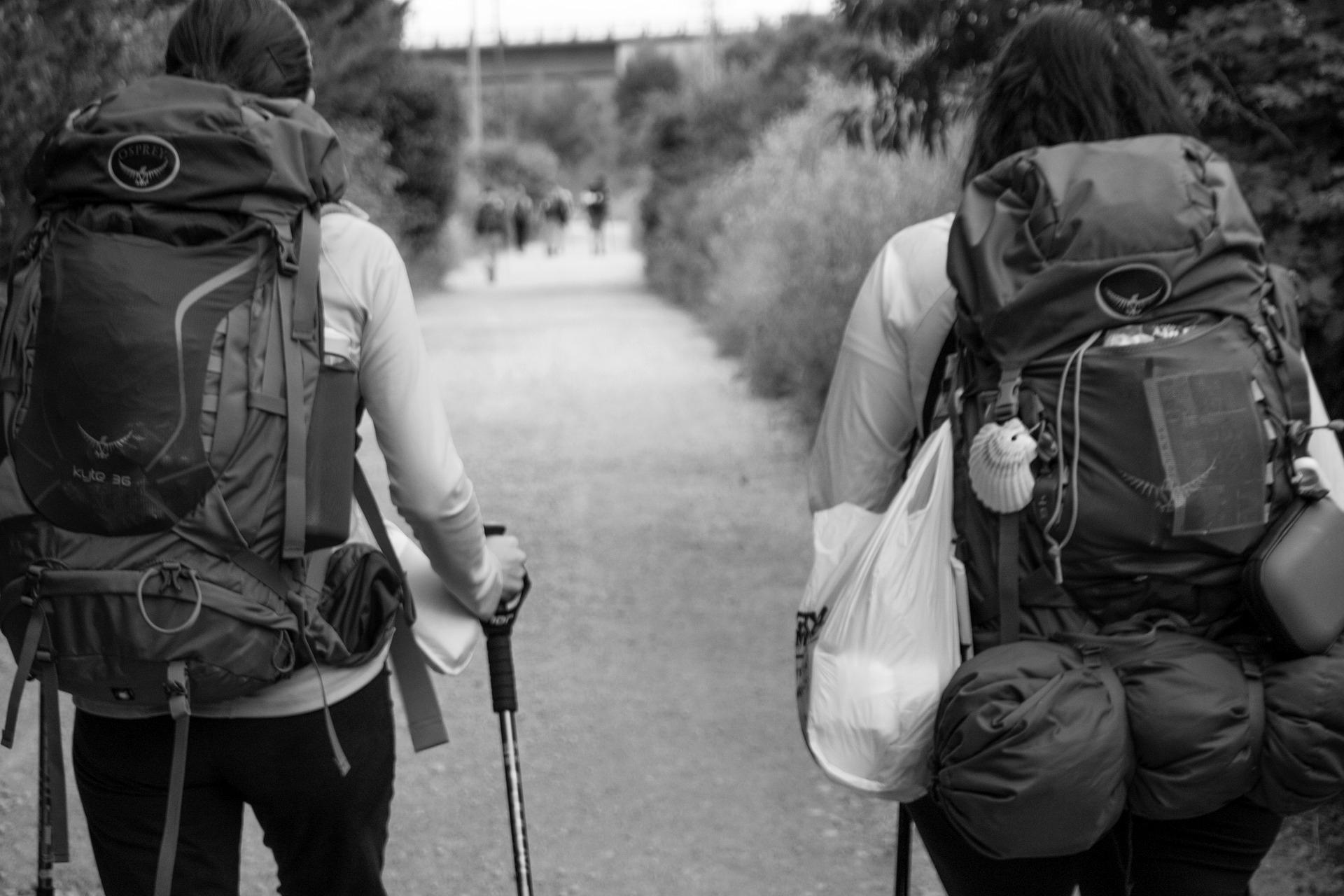 guía-camino-de-santiago-peregrinos