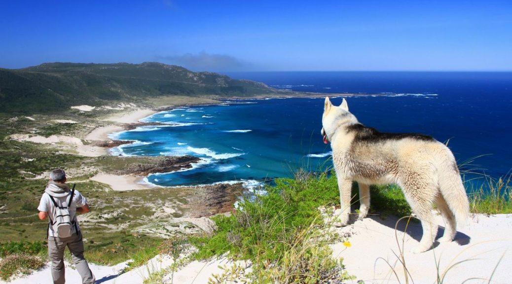 Ya que estás en Galicia ¿Por qué no te animas y continuas tu Camino por O Camiño dos Faros?